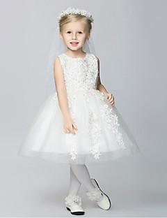 1f0bb6f4cd89 Γραμμή Α Μέχρι το γόνατο Φόρεμα για Κοριτσάκι Λουλουδιών - Δαντέλα   Τούλι    Πολυεστέρας Αμάνικο